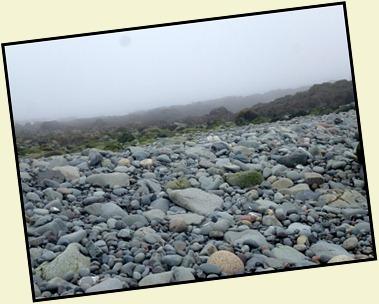 40b - Quoddy Head SP - wander the rocky beach