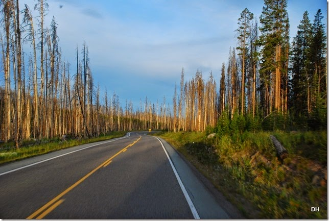 07-30-14 A Travel from E to W Yellowstone (51)