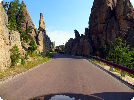 road on needles hwy