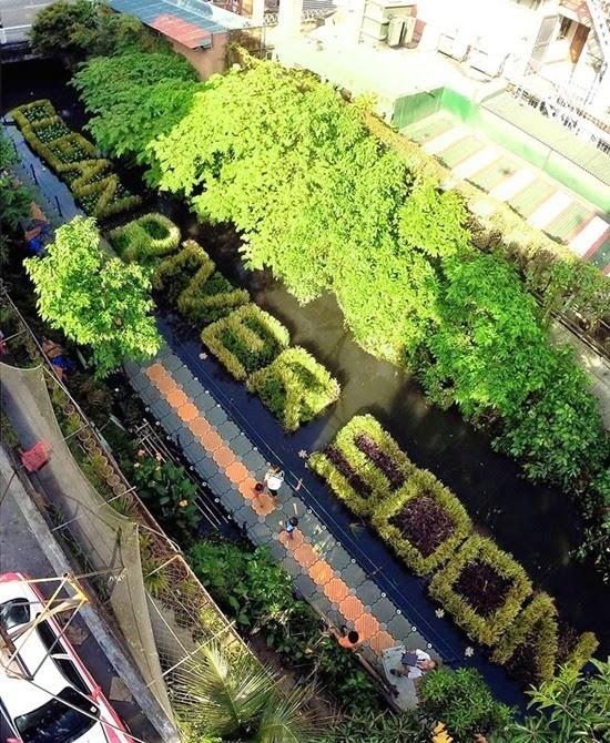 Plantas Rio Pasig 02