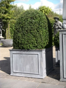 These large boxed planters would be great as a set in front of an entryway or driveway. (treillage.com)