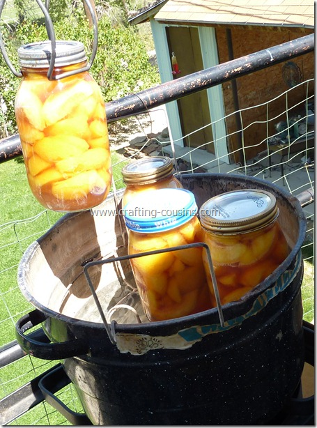 Home canned peaches by the Crafty Cousins (45)