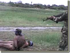 Sri Lanka War Crimes