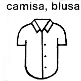 Camisa,Blusa copia.jpg