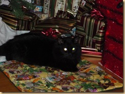 Schrodinger With Presents