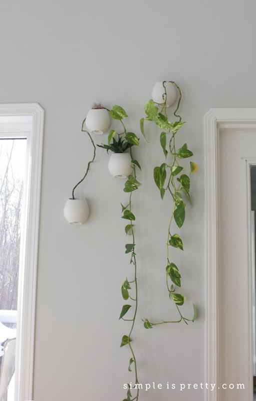 Hanging Planters in Dining Room