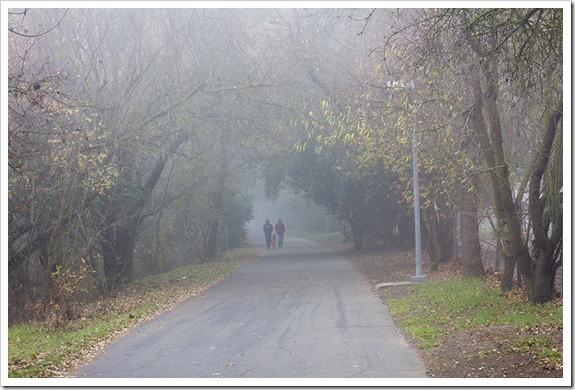 111220_fog_walkers