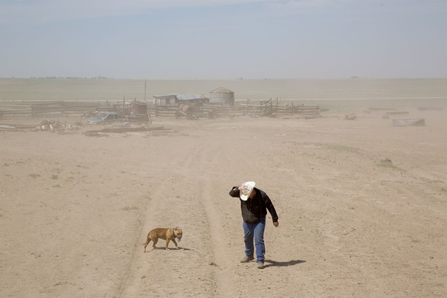 A farmer walks in a dust storm on drought-stricken lands near Felt, Oklahoma, on 1 August 2013. 'When people ask me if we'll have a Dust Bowl again, I tell them we're having one now,' says Millard Fowler, age 101. Photo: Ed Kashi, VII
