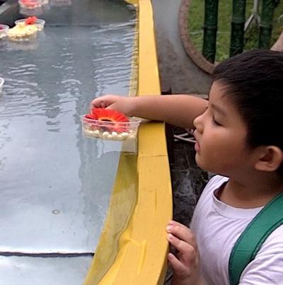 Screen Shot 2012-05-05 at 9.46.00 AM.png