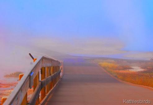 1-3-2014 pastel path-AFF13