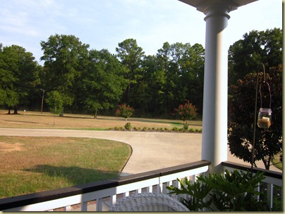 brown yard