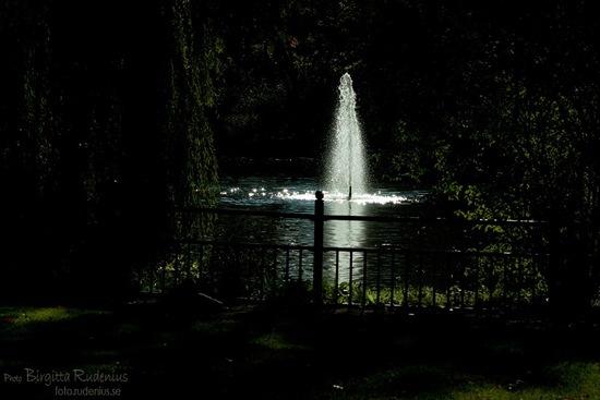 water_20111015_stadsparken