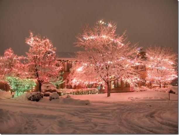 best-christmas-lights-houses-41