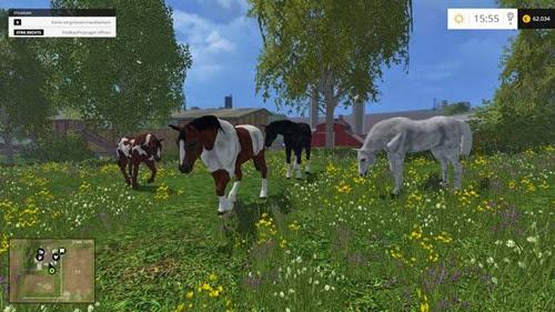 pferde simulator