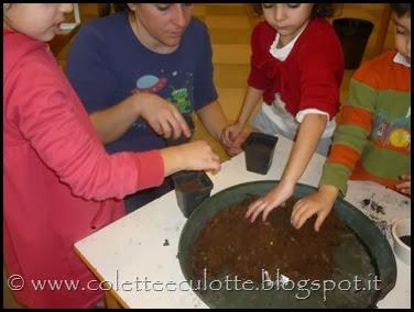 Piantiamo il basilico con i bimbi della Scuola Materna di Padulle - 6 marzo 2014 (7)