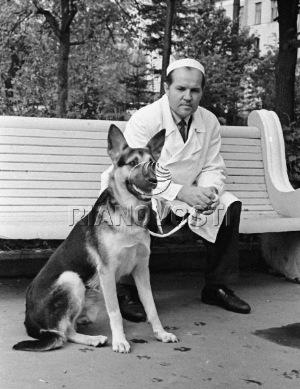 Демихов гуляет с собакой, которой было пересажено второе сердце