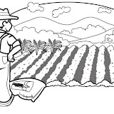 Agricultor-03.jpg