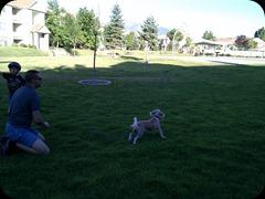 7-21-2011 fetch (2)