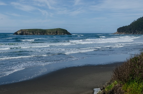 lunch stop north of Gold Beach (8 of 9)