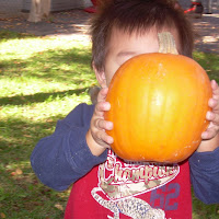 On Campus Pumpkin Patch