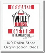 100-Dollar-Store-Organization-Ideas3