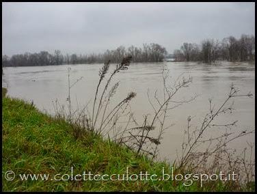Piena del Reno a Padulle - 31 gennaio 2014 (9)