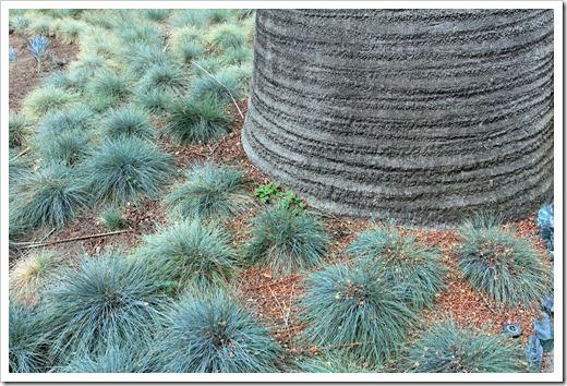 130403_Lotusland_Blue-Garden_10