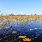 Xudum  Lodge,  im Okavangodelta © Foto: Ulrike Pârvu | Outback Africa Erlebnisreisen