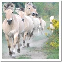 running_herd_2
