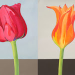tulipmix14.jpg