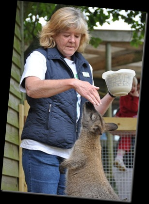 Pam White with Wallaby (resized) DSC_0173
