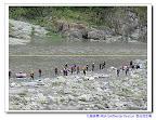 海上颱風警報發布下的急流救生訓練~IRIA Swiftwater Rescue 急流救生員