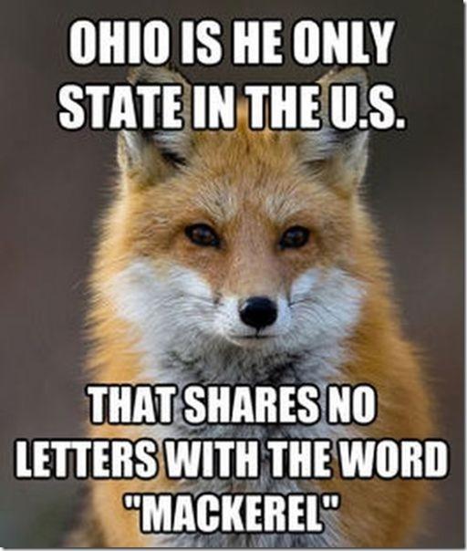 fox-facts-meme-22