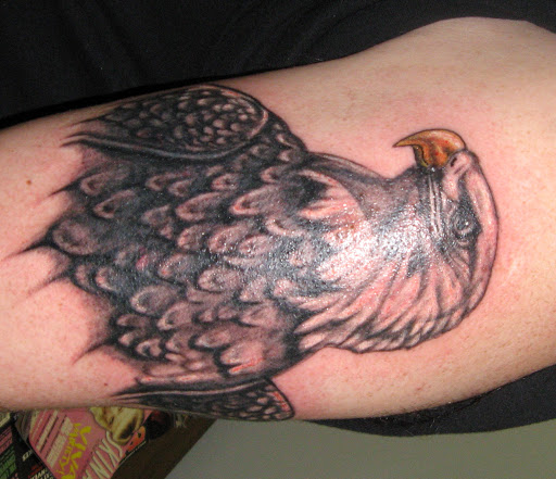 Daves Eagle namebanner cover