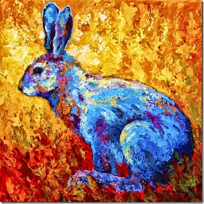1-jackrabbit-marion-rose