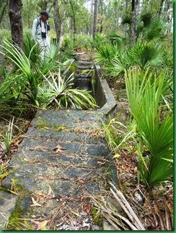 Pat's Island Trail 046