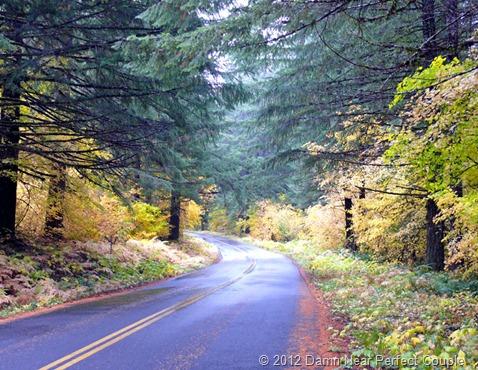 Cascade Mtns Drive