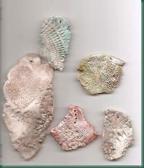 sea fossils ceramic