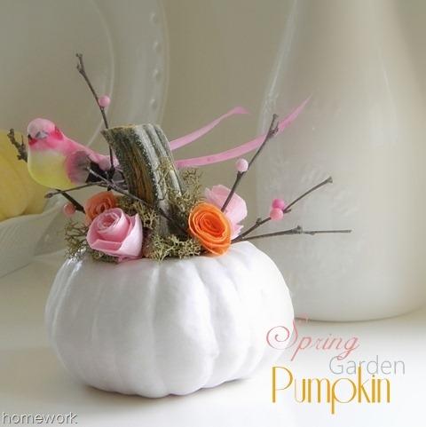 [Pumpkin-816.jpg]