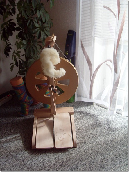 2011_08 Mein Kiwi kommt an (6)