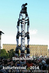 bm-image-730634 Stockholms kulturfestival år 2014.jpg