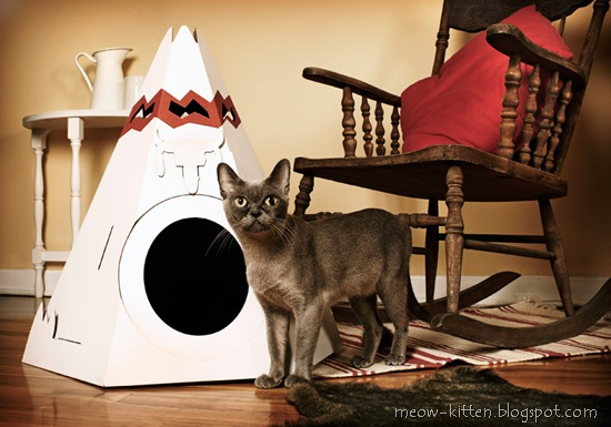 Cat teepee made of cardboard