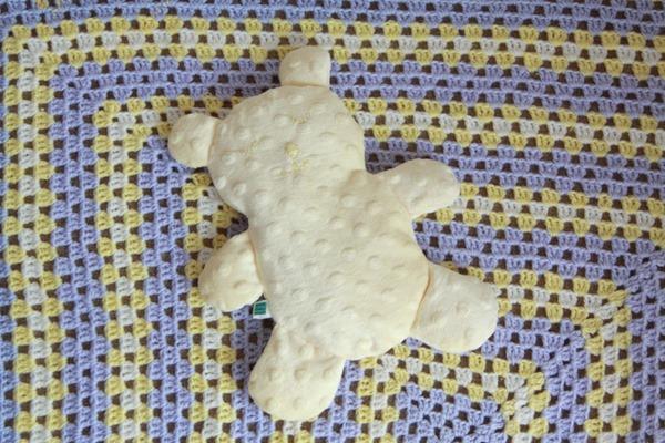 Flat Teddy (11)
