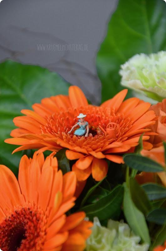 KleinerDienstag 03_2 Blumen abstauben