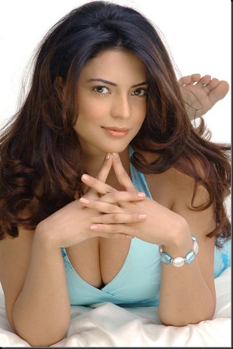 Swetha Bharadwaj hot pictures02