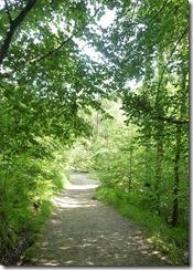 birks path2