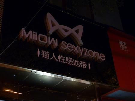 Magazin chinezesc