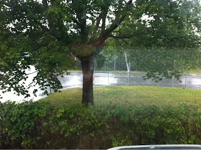 Regn regn.....