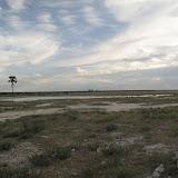 Tsumeb - Etosha - Autour du pan (16).JPG
