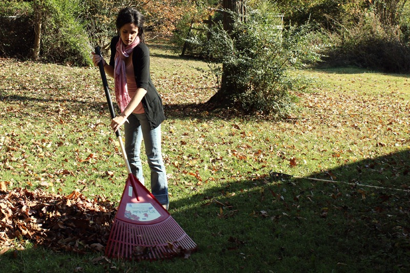 raking
